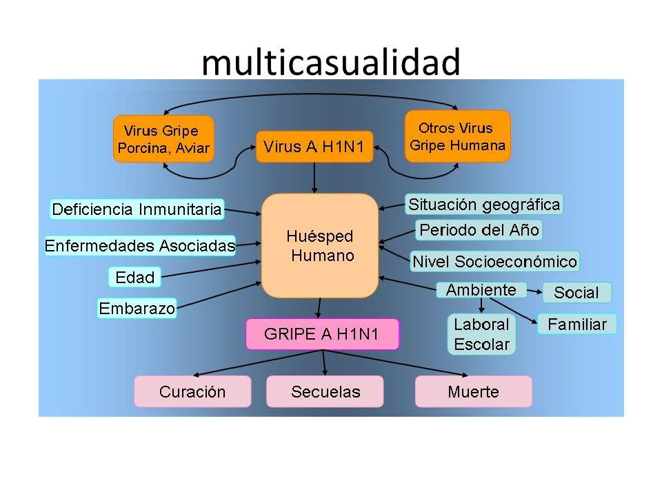 multicasualidad