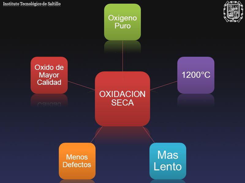 Mas Lento 1200°C OXIDACION SECA Oxigeno Puro Oxido de Mayor Calidad
