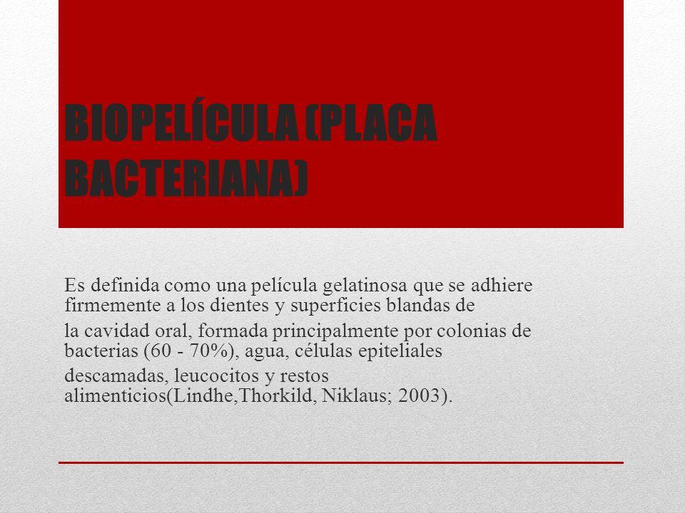 Biopelícula (placa bacteriana)