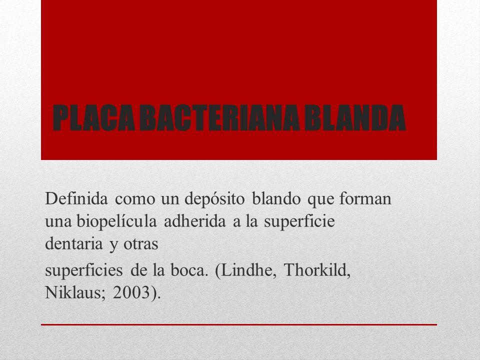Placa bacteriana blanda