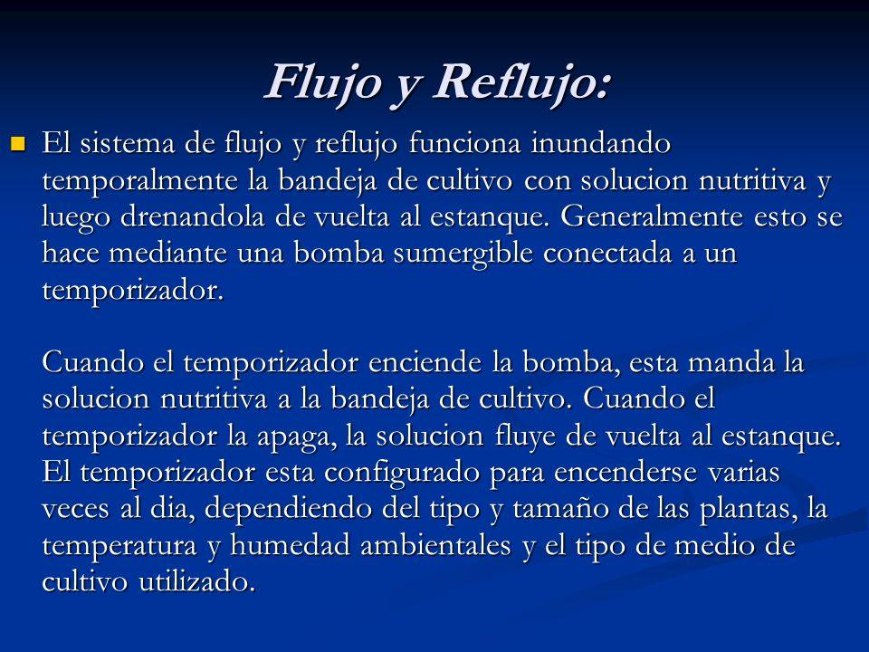 Flujo y Reflujo:
