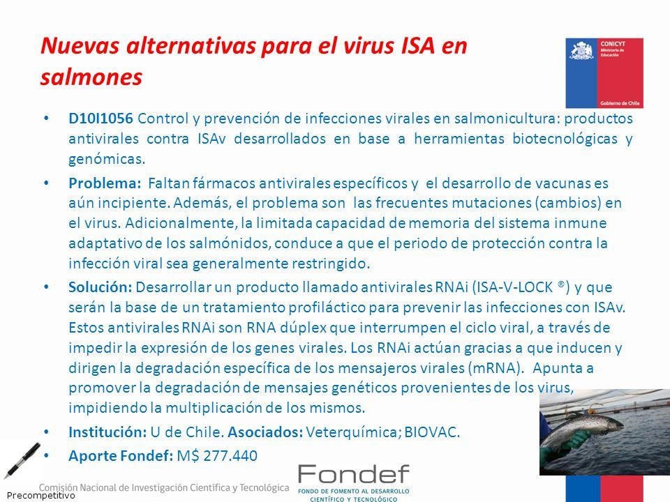 Nuevas alternativas para el virus ISA en salmones