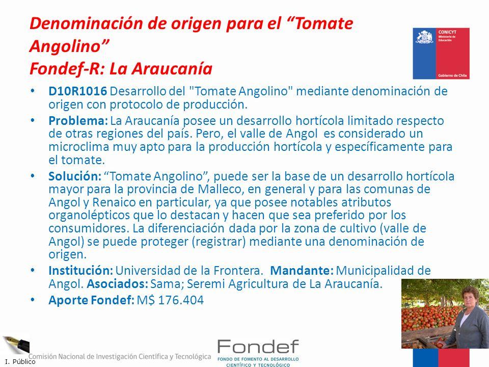 Denominación de origen para el Tomate Angolino Fondef-R: La Araucanía
