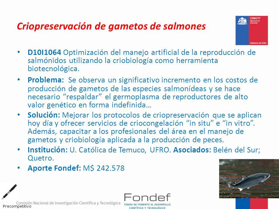 Criopreservación de gametos de salmones