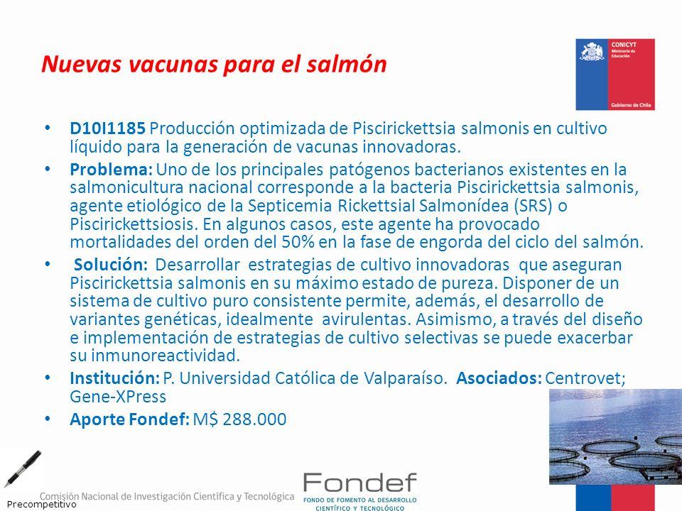 Nuevas vacunas para el salmón