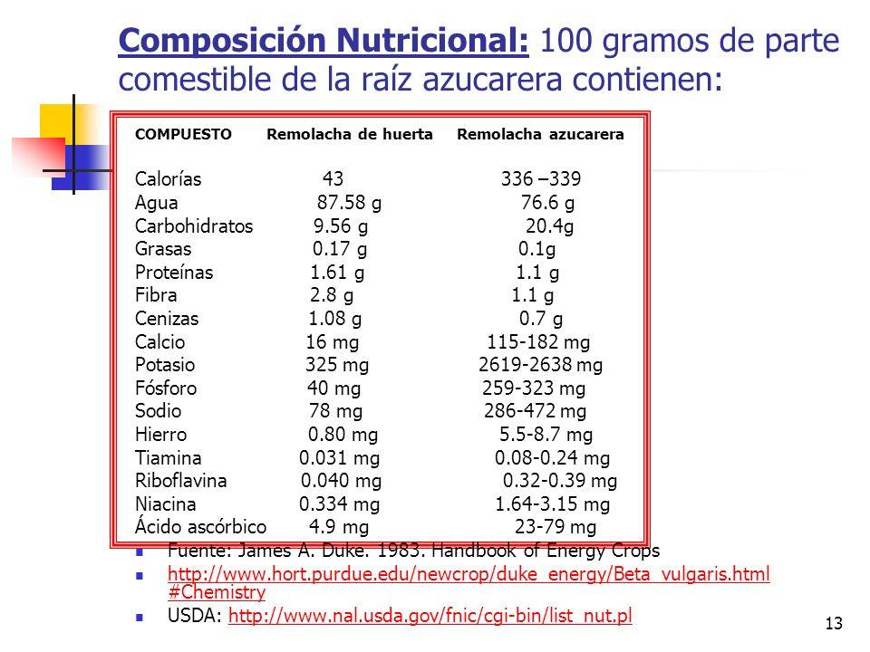 Composición Nutricional: 100 gramos de parte comestible de la raíz azucarera contienen: