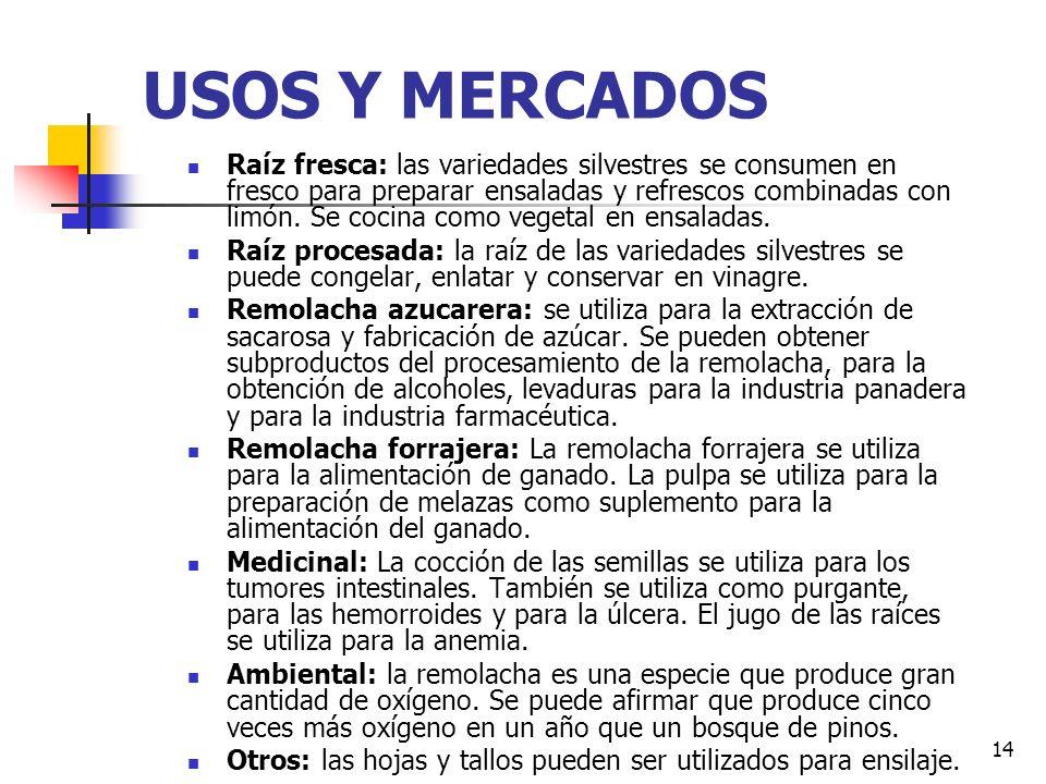 USOS Y MERCADOS