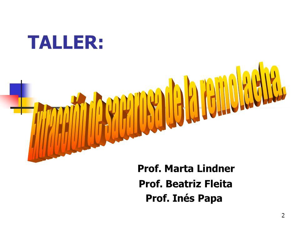 Prof. Marta Lindner Prof. Beatriz Fleita Prof. Inés Papa