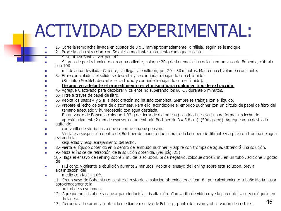 ACTIVIDAD EXPERIMENTAL: