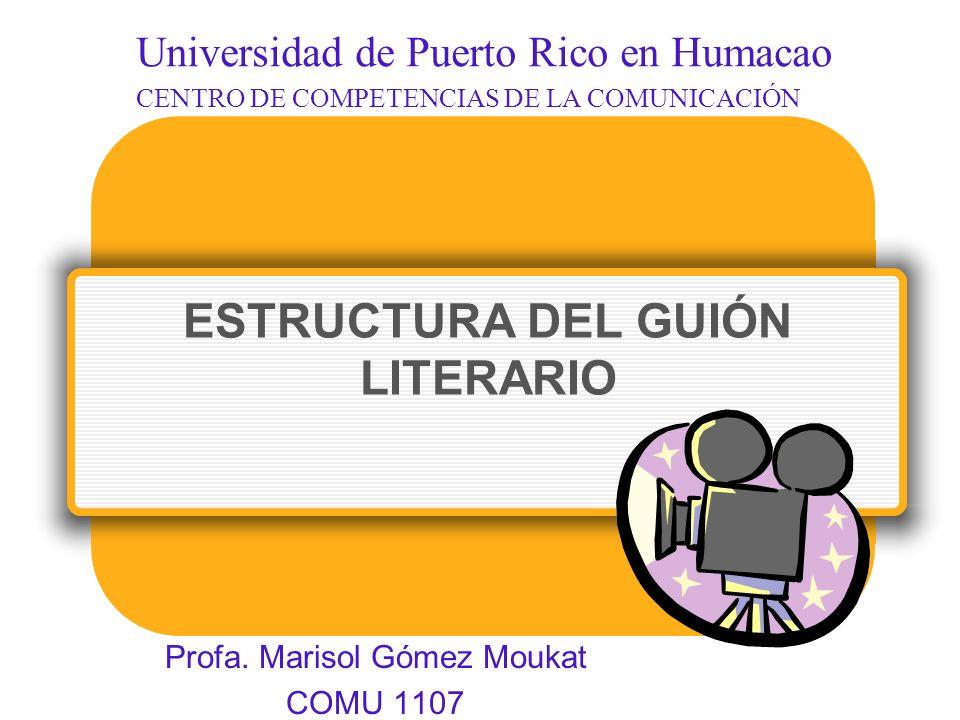 ESTRUCTURA DEL GUIÓN LITERARIO