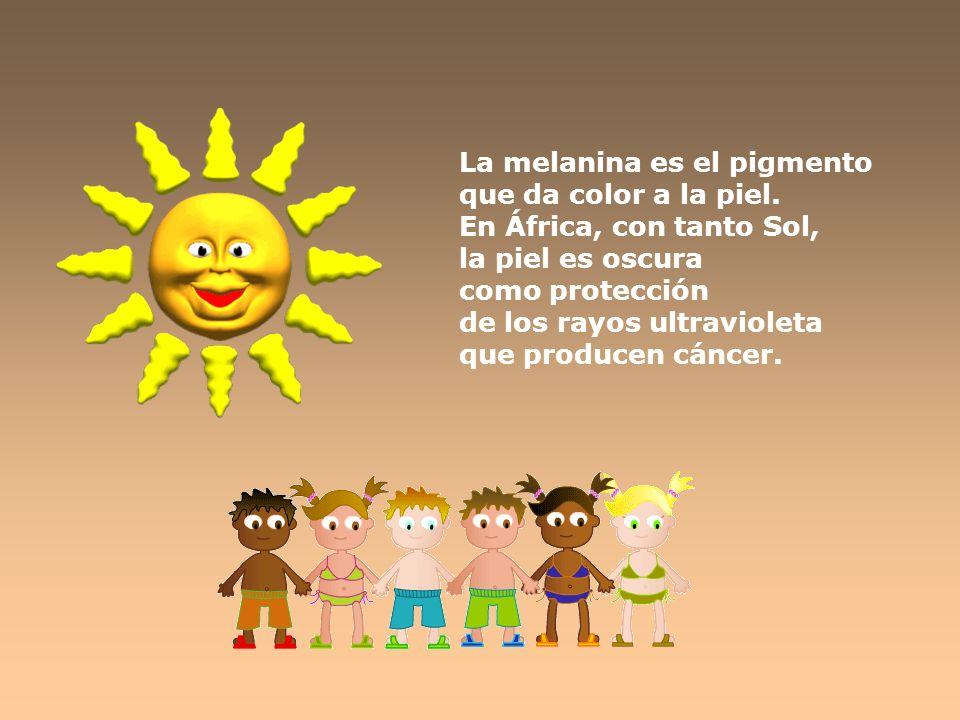 La melanina es el pigmento