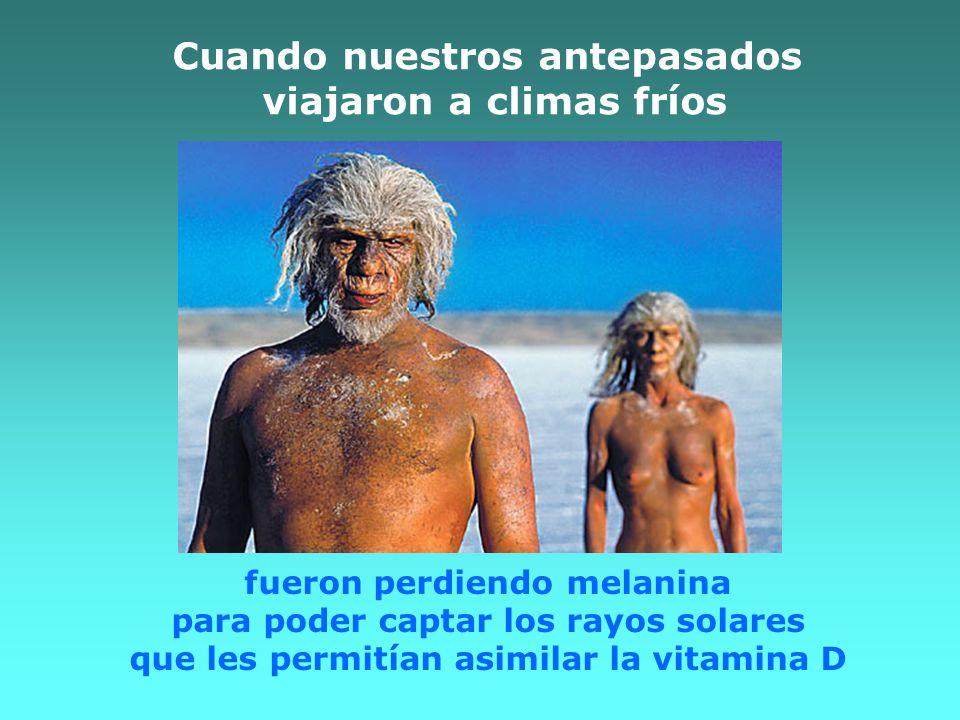 Cuando nuestros antepasados viajaron a climas fríos