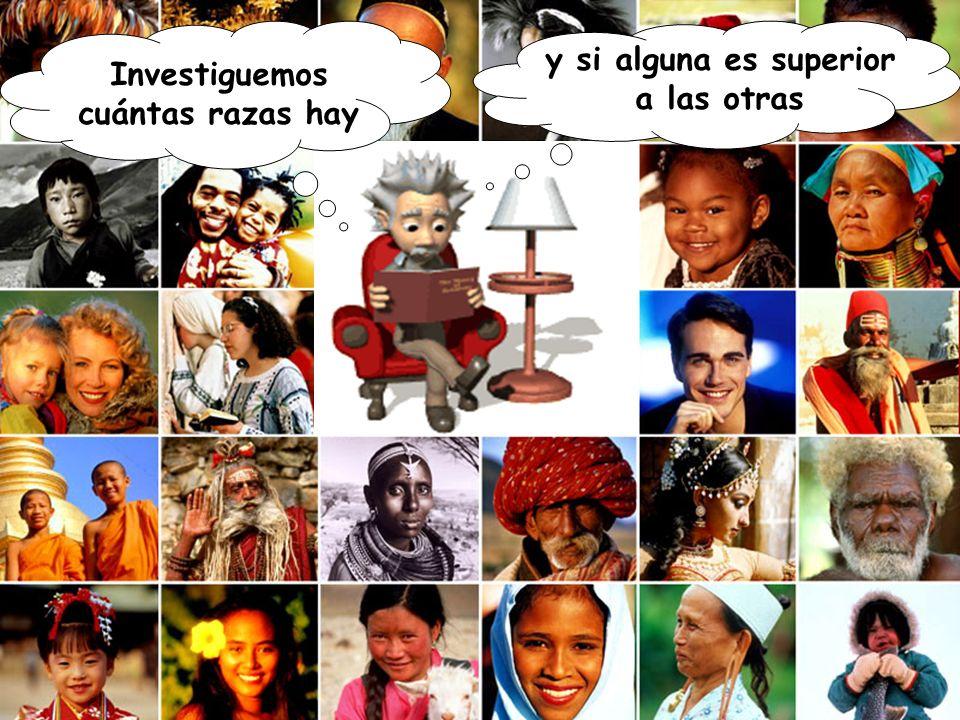 Investiguemos cuántas razas hay Yo pienso que una por cada continente