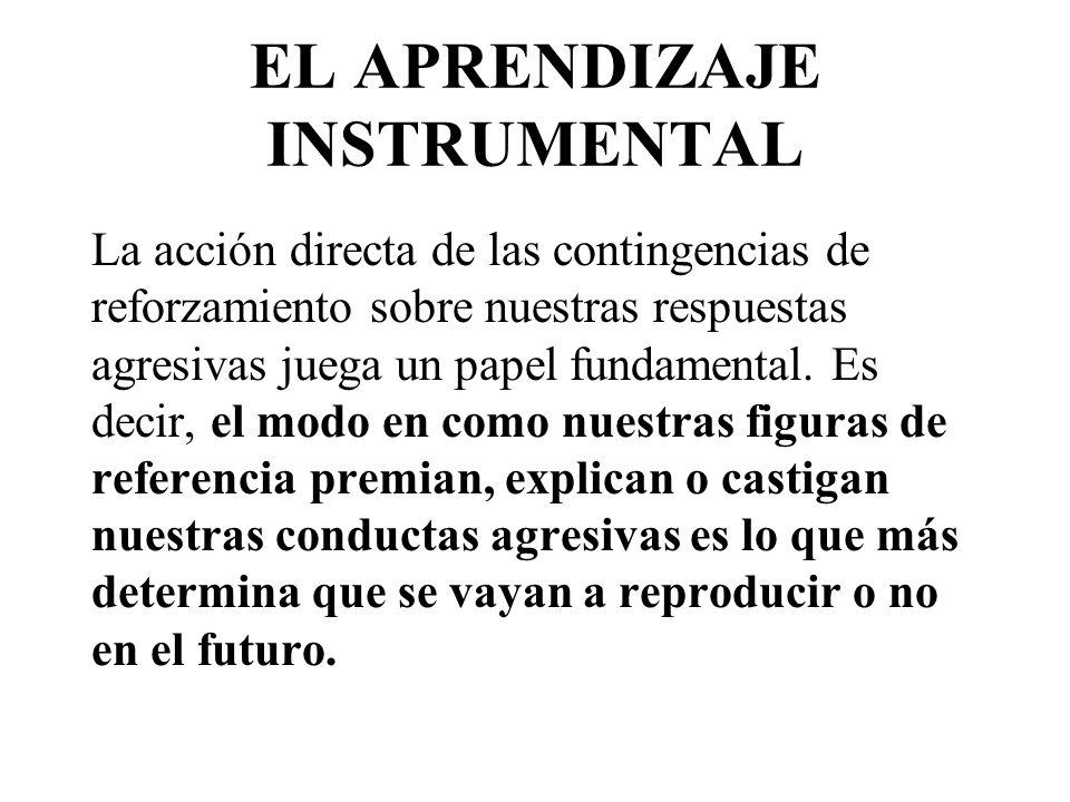 EL APRENDIZAJE INSTRUMENTAL