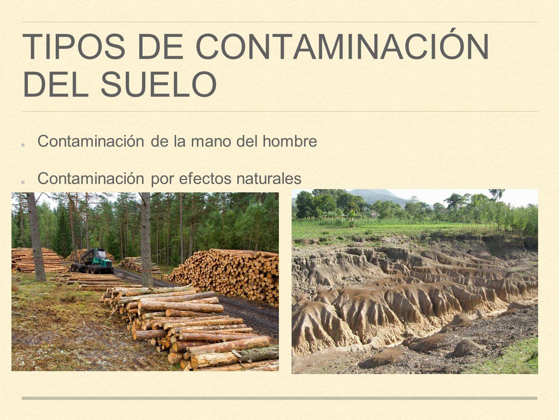 Bloque 2 contaminaci n del aire agua y suelo ppt - Clases de suelo ...