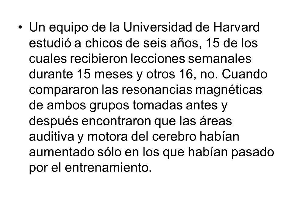Un equipo de la Universidad de Harvard estudió a chicos de seis años, 15 de los cuales recibieron lecciones semanales durante 15 meses y otros 16, no.