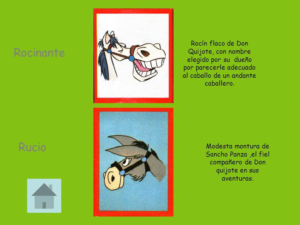 Rocín flaco de Don Quijote, con nombre elegido por su dueño por parecerle adecuado al caballo de un andante caballero.