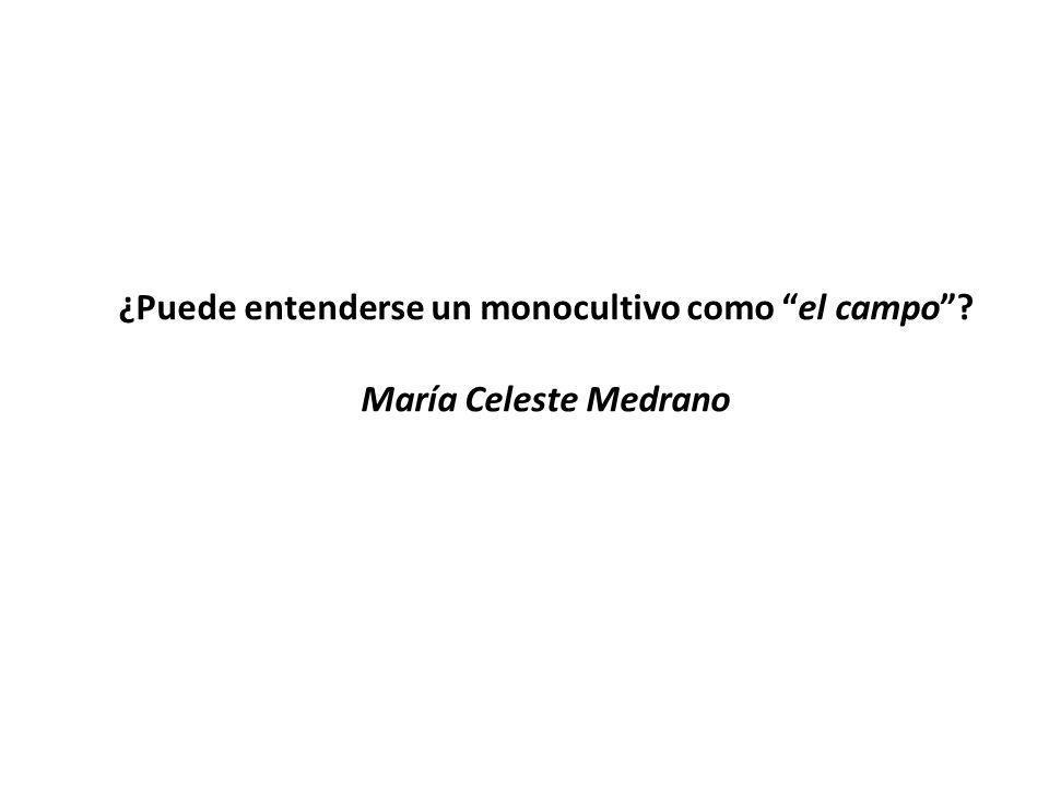 ¿Puede entenderse un monocultivo como el campo María Celeste Medrano