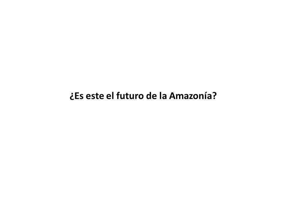 ¿Es este el futuro de la Amazonía