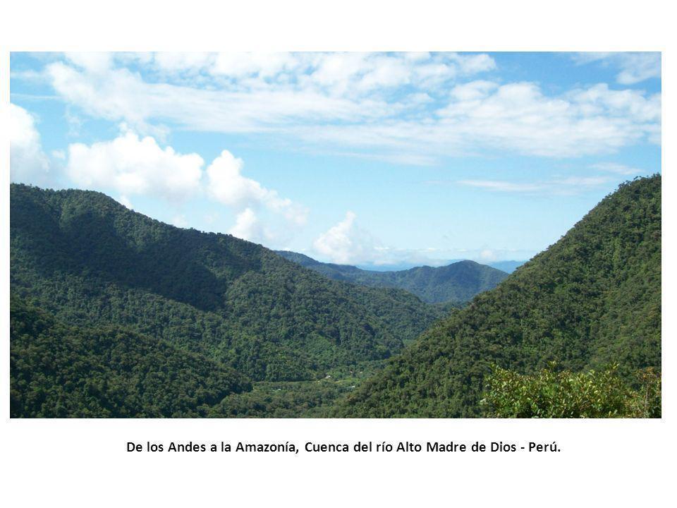 De los Andes a la Amazonía, Cuenca del río Alto Madre de Dios - Perú.