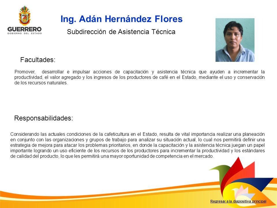 Ing. Adán Hernández Flores