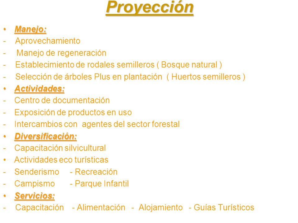Proyección Manejo: - Aprovechamiento Manejo de regeneración