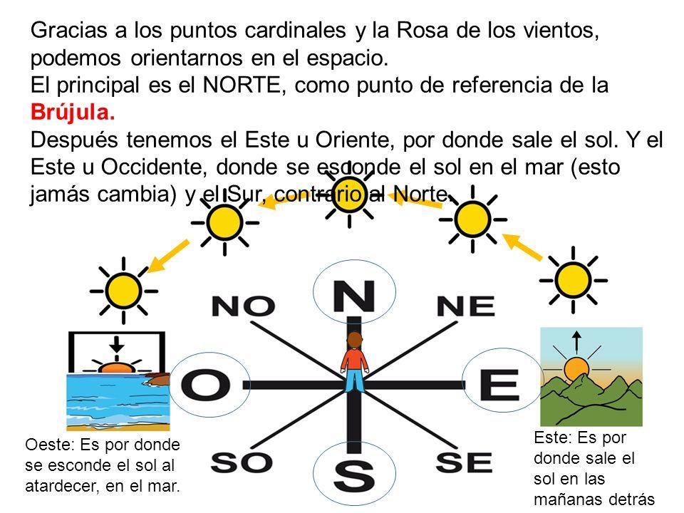 Los puntos cardinales y la orientaci n en el espacio ppt for Donde esta el sol