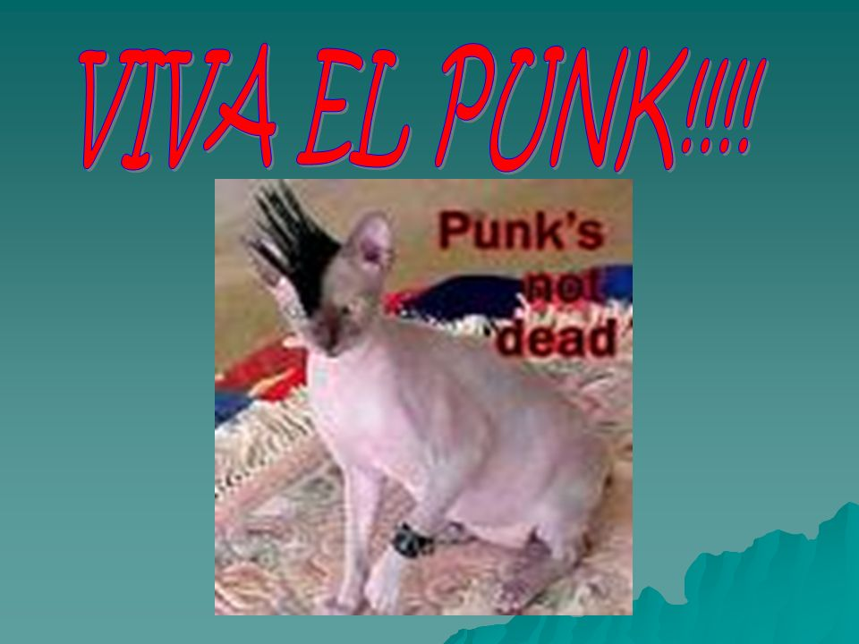 VIVA EL PUNK!!!!