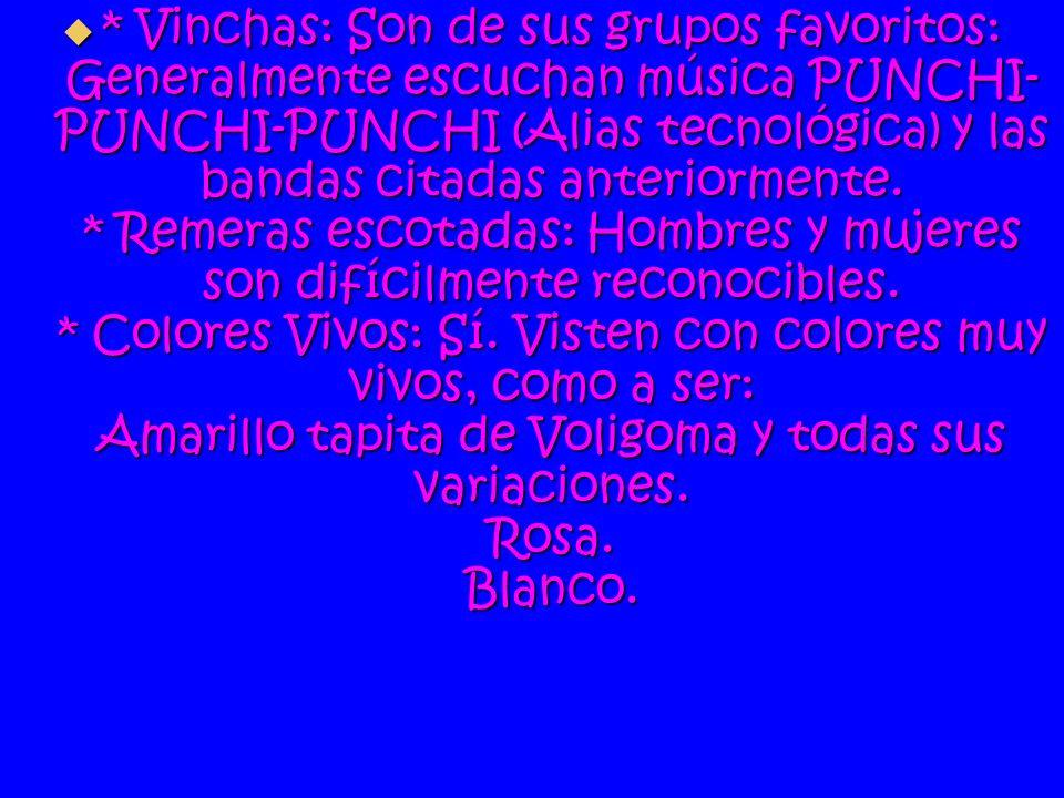 * Vinchas: Son de sus grupos favoritos: Generalmente escuchan música PUNCHI-PUNCHI-PUNCHI (Alias tecnológica) y las bandas citadas anteriormente.