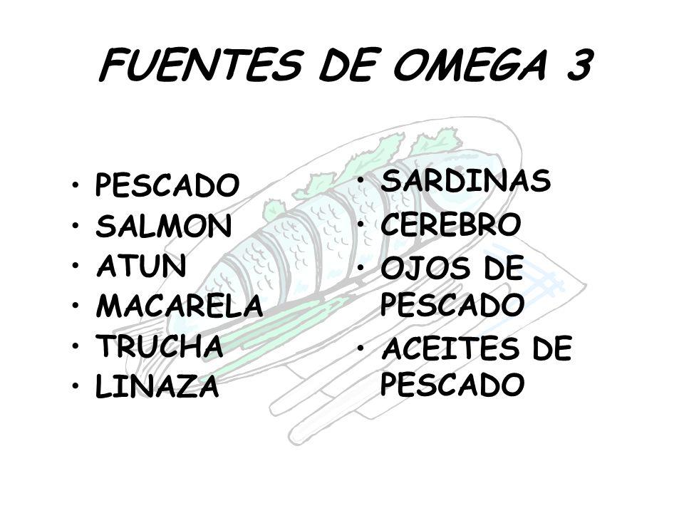 FUENTES DE OMEGA 3 SARDINAS PESCADO CEREBRO SALMON OJOS DE PESCADO