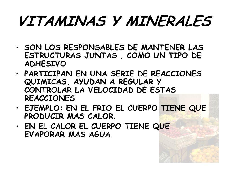VITAMINAS Y MINERALES SON LOS RESPONSABLES DE MANTENER LAS ESTRUCTURAS JUNTAS , COMO UN TIPO DE ADHESIVO.