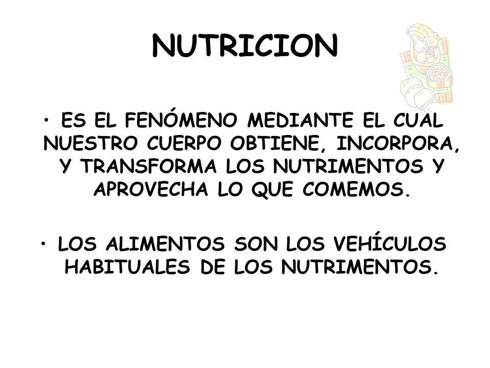 LOS ALIMENTOS SON LOS VEHÍCULOS HABITUALES DE LOS NUTRIMENTOS.