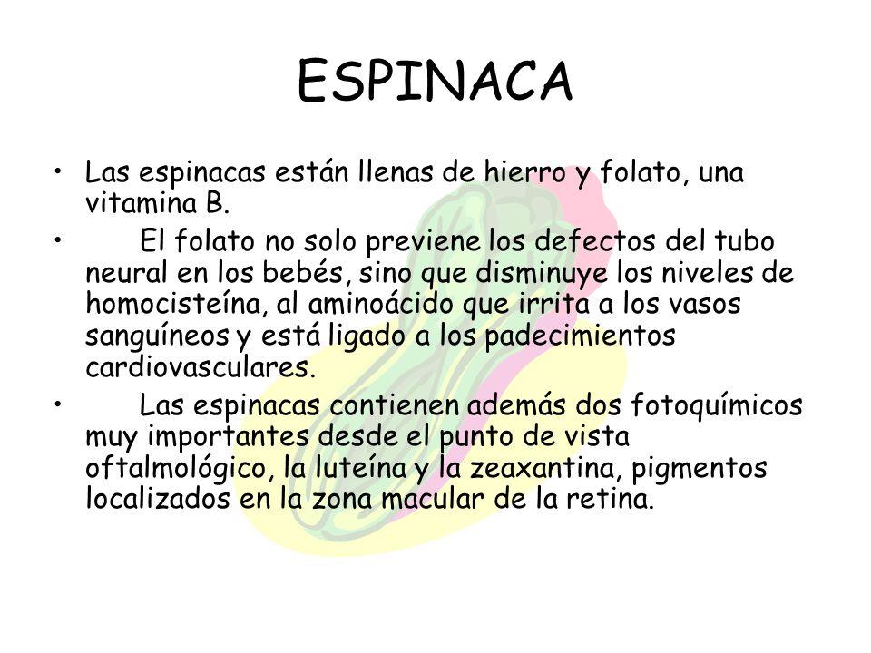 ESPINACA Las espinacas están llenas de hierro y folato, una vitamina B.