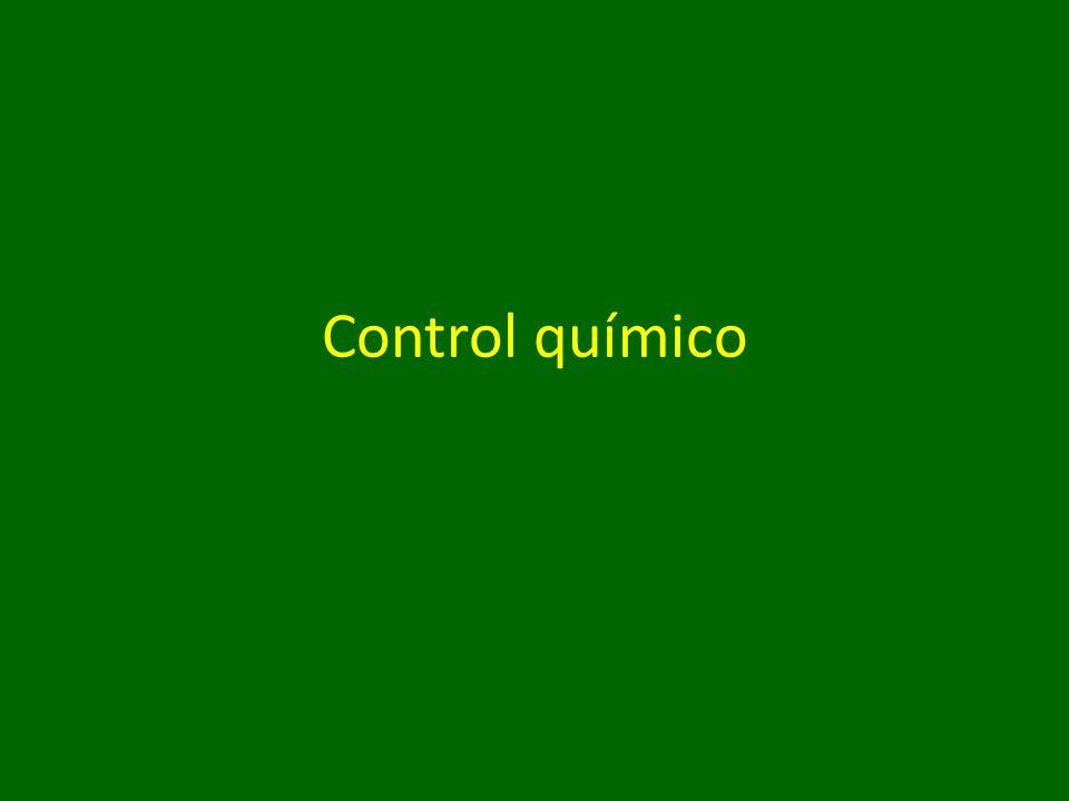Control químico