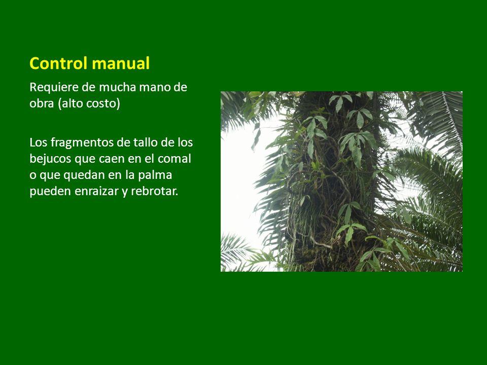 Control manual Requiere de mucha mano de obra (alto costo)