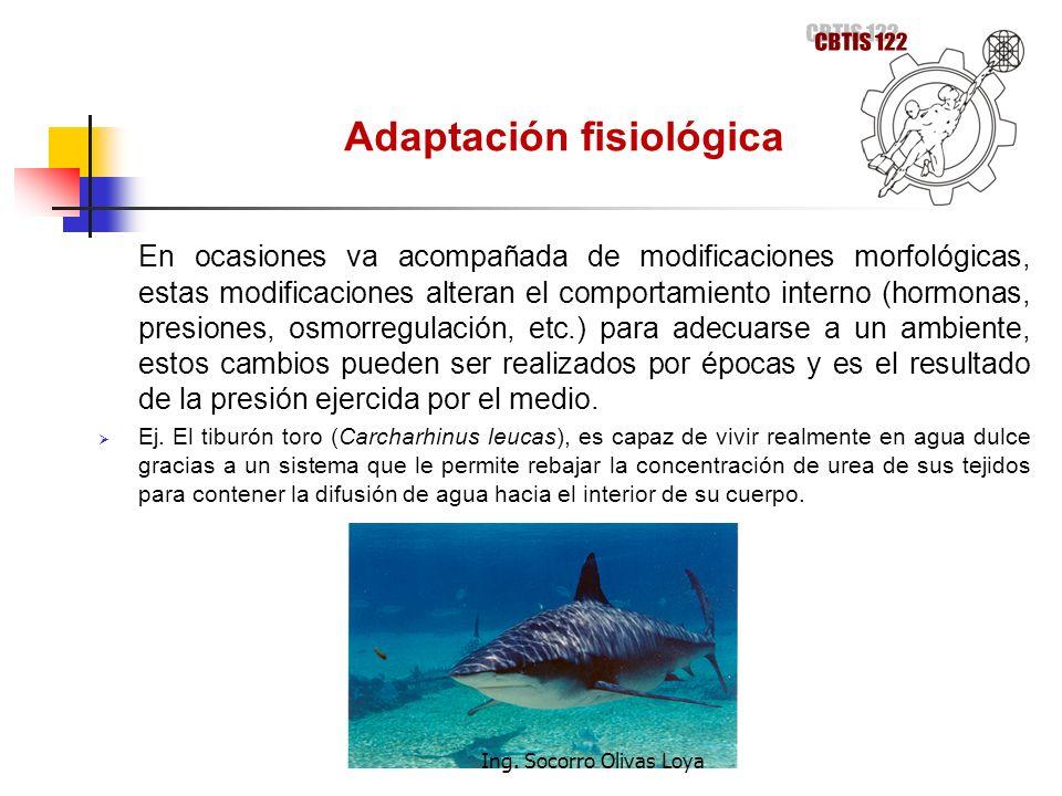 Adaptación fisiológica