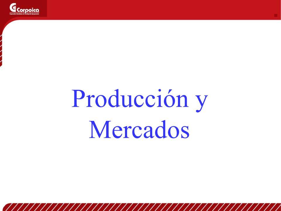 Producción y Mercados