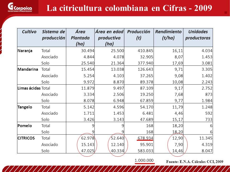 La citricultura colombiana en Cifras - 2009