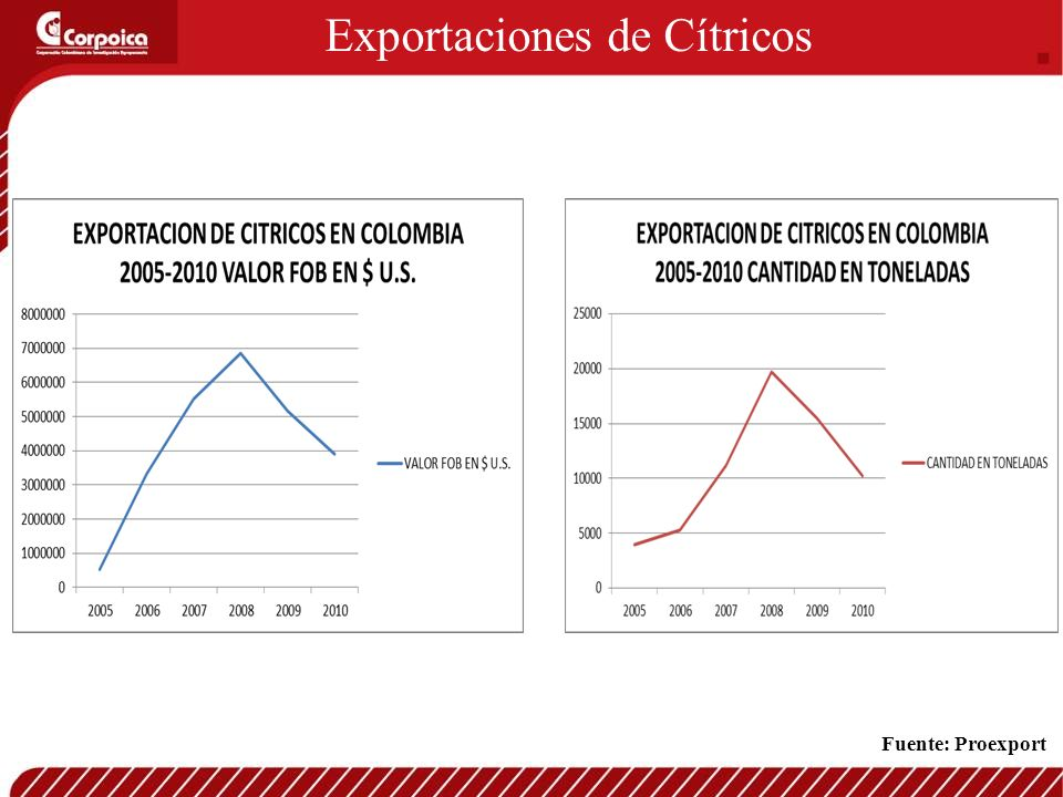Exportaciones de Cítricos