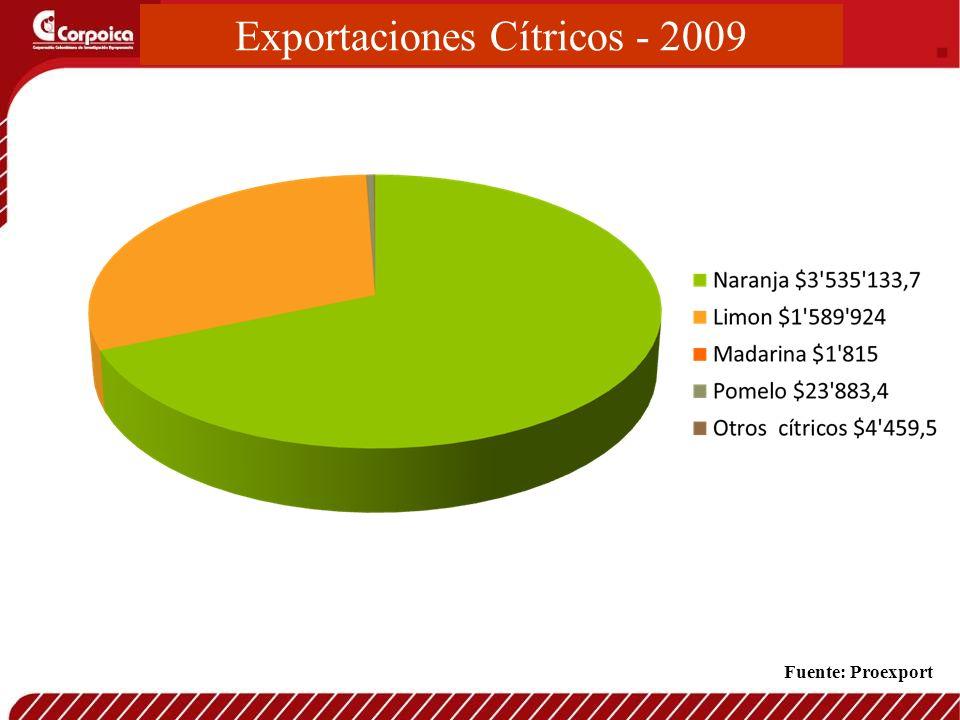 Exportaciones Cítricos - 2009