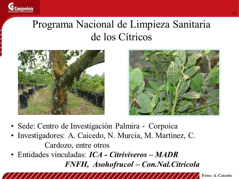 Programa Nacional de Limpieza Sanitaria de los Cítricos