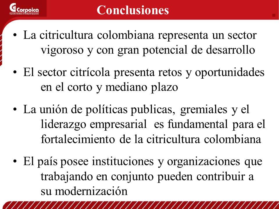 Conclusiones La citricultura colombiana representa un sector vigoroso y con gran potencial de desarrollo.