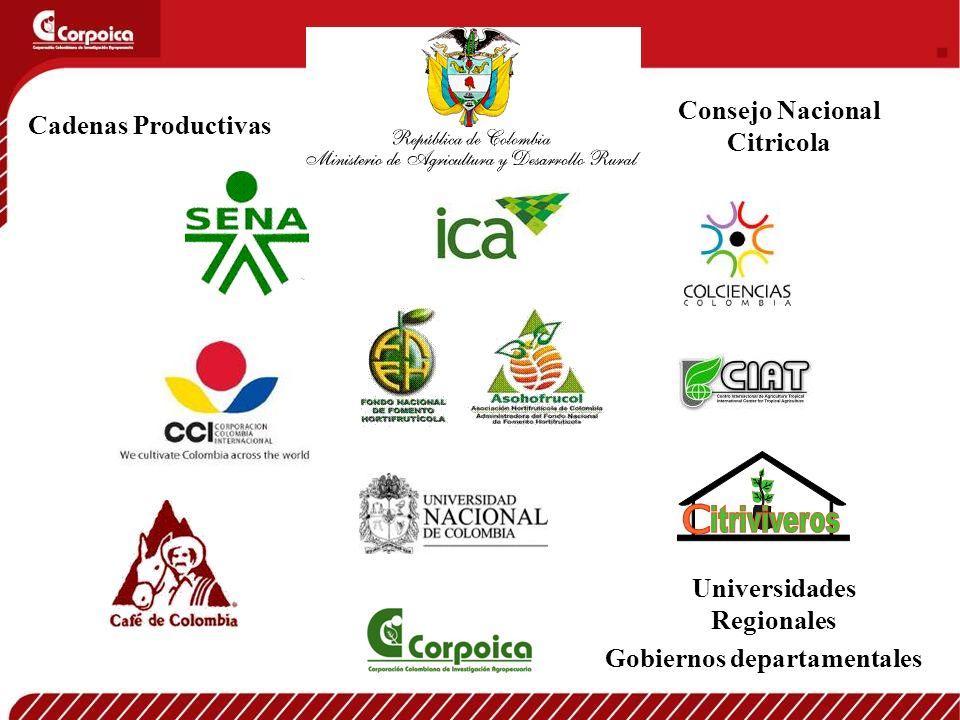 Consejo Nacional Citricola Cadenas Productivas