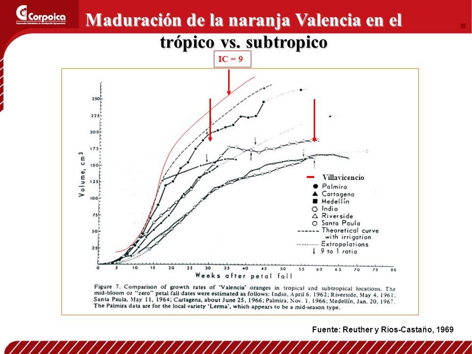 Maduración de la naranja Valencia en el trópico vs. subtropico
