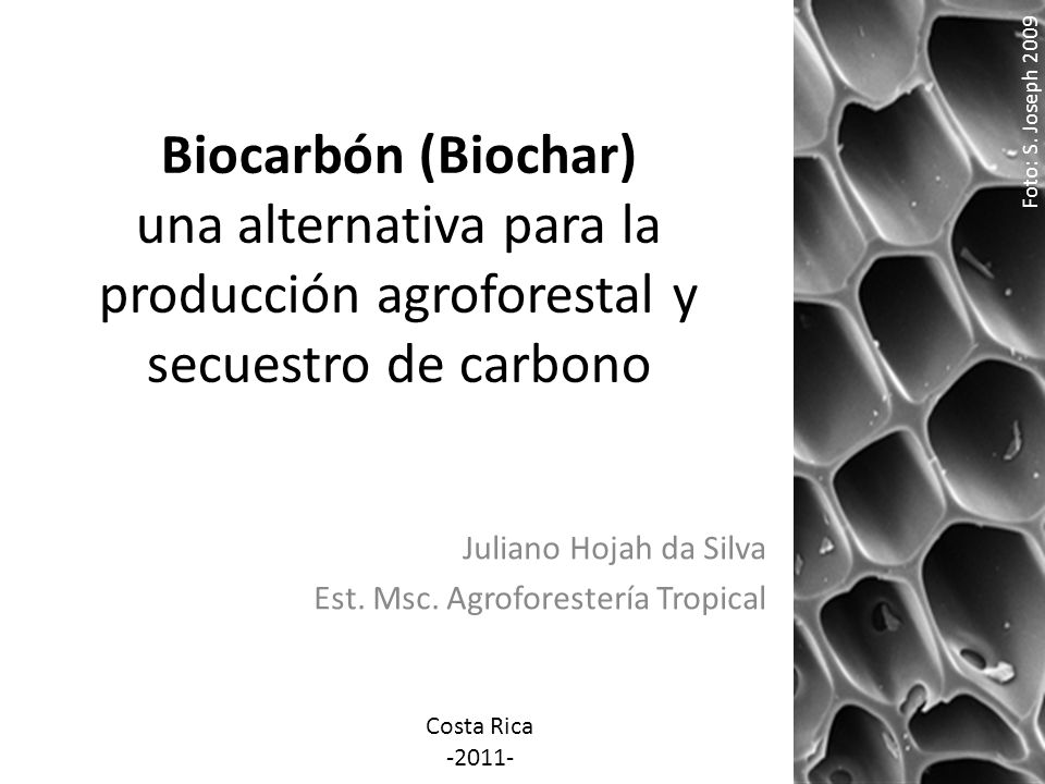Juliano Hojah da Silva Est. Msc. Agroforestería Tropical