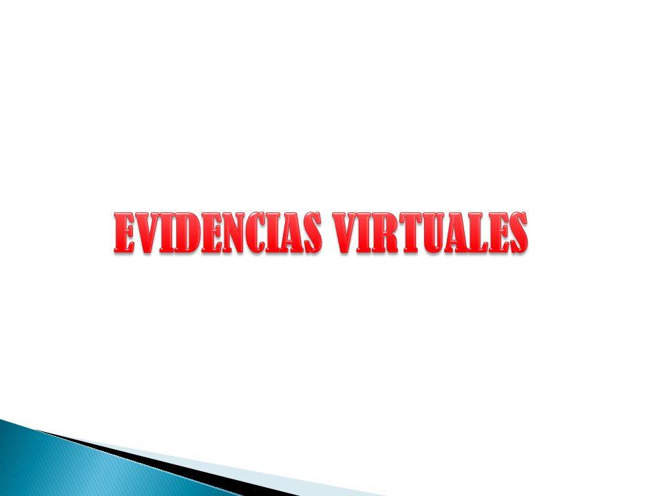 EVIDENCIAS VIRTUALES