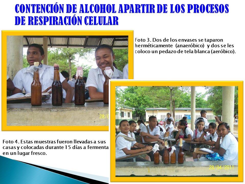 CONTENCIÓN DE ALCOHOL APARTIR DE LOS PROCESOS DE RESPIRACIÓN CELULAR