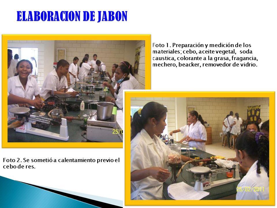 ELABORACION DE JABON