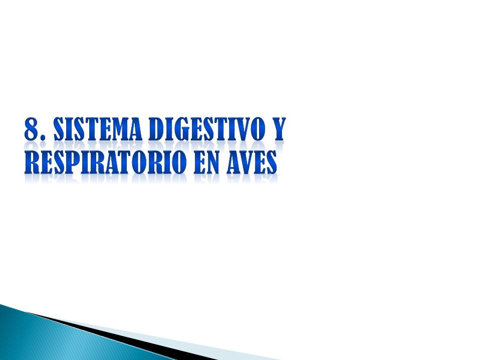 8. SISTEMA DIGESTIVO Y RESPIRATORIO EN AVES