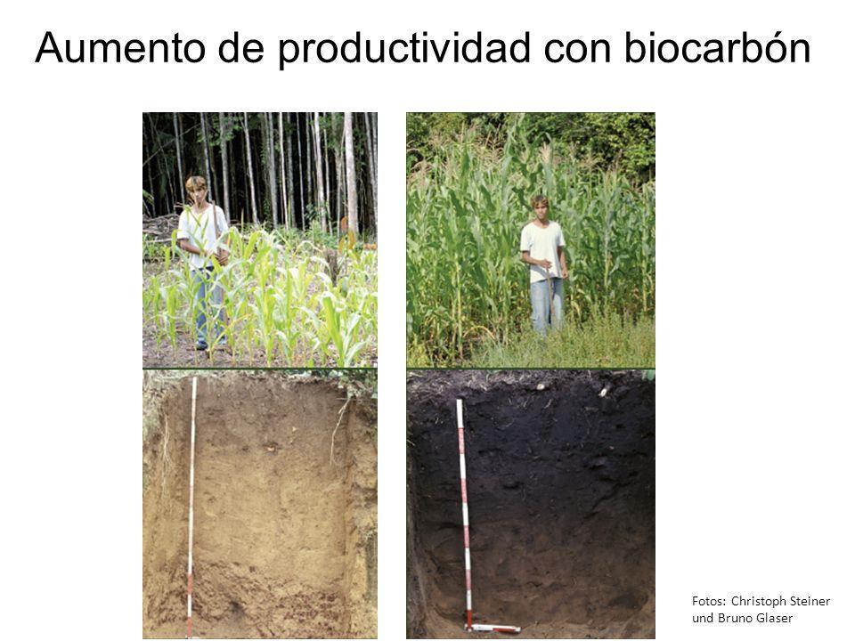 Aumento de productividad con biocarbón